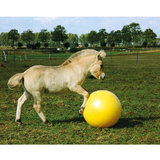 Maximus Power Play speelbal paard 75cm_