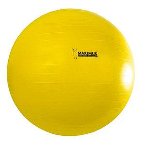Maximus speelbal paard 100cm