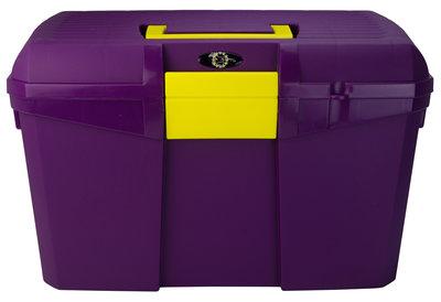 Borstelkist dahlia violet-geel