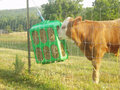 Hooi Feeder kunststof groen 33x50x60cm